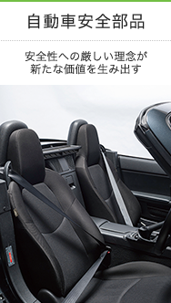 Automotive Safety Systems Business Division